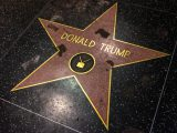 Los Angeles, USA - January 8, 2017: Donald Trump Star vandalized at Walk of Fame on Hollywood Boulevard.